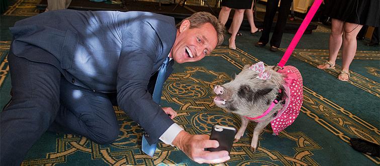 pig on leash talking a selfie with senator jeff flake