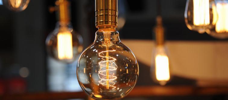 Lightbulbs hang from a ceiling.