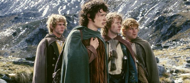The Lord of the Rings follows the stories of various characters, but what is the name of the main protagonist?