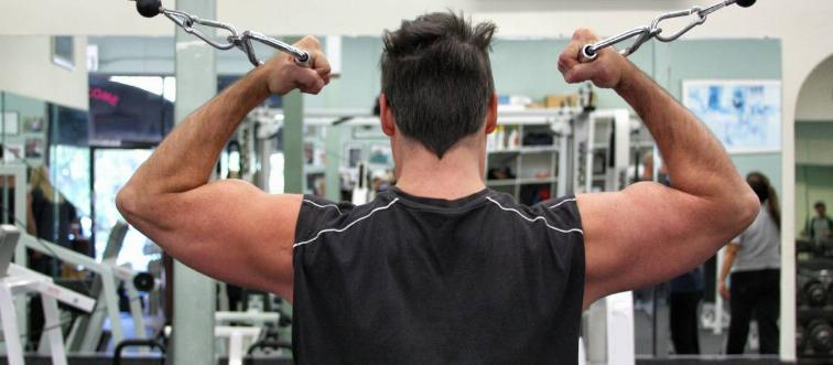 What muscle travels from the back of the shoulder down to the hip?