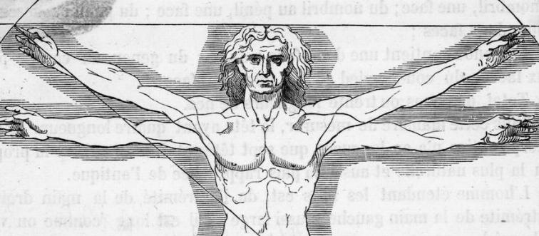 The mimetic muscles are located in which part of the body?